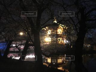 上野公園 夜桜 - No.1113514