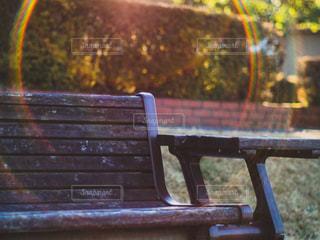 公園のベンチの写真・画像素材[1117448]