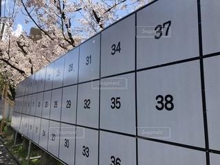 春の選挙告知前の掲示板の写真・画像素材[2012888]