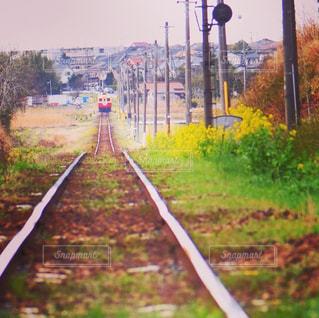 下り列車を走行する列車を追跡フィールドの近くの写真・画像素材[1114313]