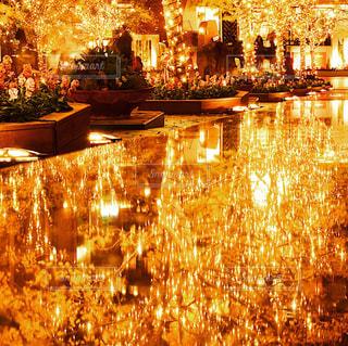 夜の街の景色の写真・画像素材[1116586]