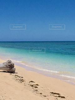 グレートバリアリーフのビーチの写真・画像素材[1179451]