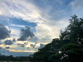 東京夕景の写真・画像素材[1307910]