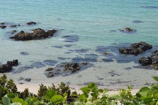 水の体の横にある岩の上に座って鳥の群れの写真・画像素材[1118097]