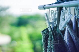 洗濯の写真・画像素材[1173878]