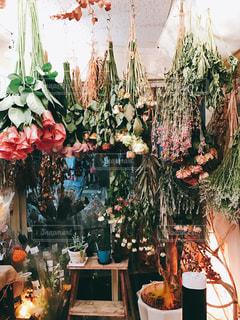 たくさんの花の写真・画像素材[1422320]