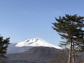 背景の山と木の写真・画像素材[1120683]