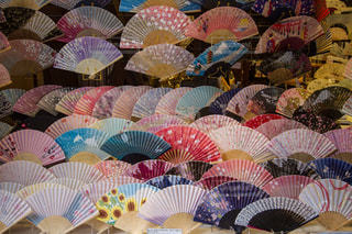 京都の扇子の写真・画像素材[1117020]