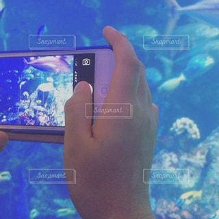携帯電話を持つ手の写真・画像素材[1117158]