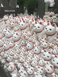 招き猫がいっぱいの写真・画像素材[1117495]
