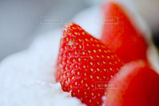 近くに赤い果実の - No.1237633