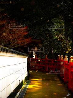 光の道の写真・画像素材[1466070]