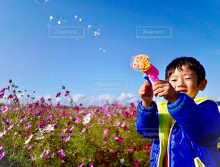凧の飛行少年の写真・画像素材[1625964]