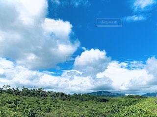 空に雲が立つ大きな緑の畑の写真・画像素材[3383369]