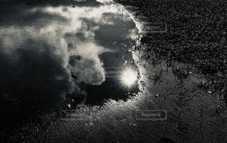 モノクロの写真・画像素材[3478613]