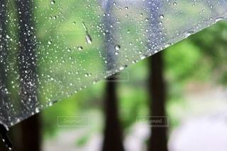 雨模様の写真・画像素材[3494791]