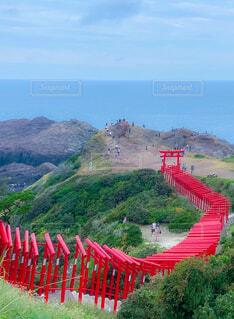 元乃隅稲成神社の写真・画像素材[4412154]
