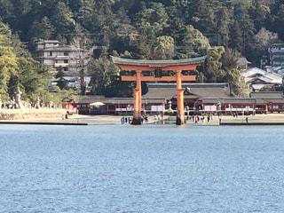 宮島鳥居の写真・画像素材[1118377]