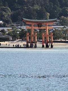 宮島 鳥居の写真・画像素材[1118379]