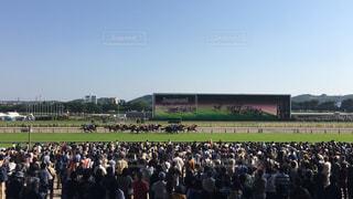 東京競馬場の写真・画像素材[1182041]