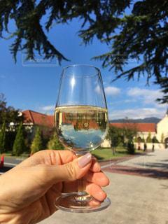 ワインのグラスを持っている手の写真・画像素材[1127141]