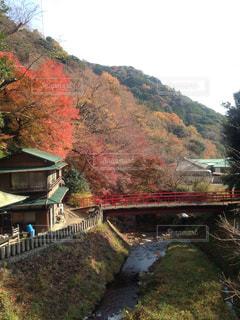 紅く染まり始めた山の景色の写真・画像素材[1120209]
