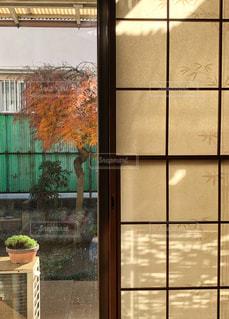 窓際の風景の写真・画像素材[1647924]