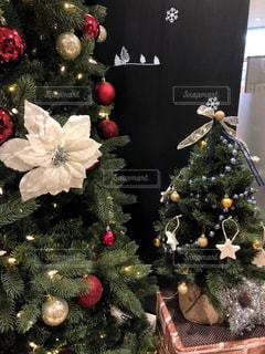 クリスマスの写真・画像素材[1674499]