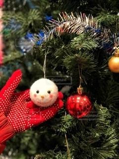 クリスマスツリーの写真・画像素材[2783617]