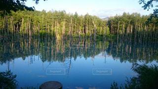 青い池 - No.1120070