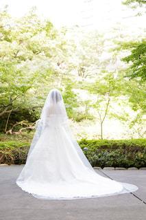ウェディングドレスを着て緑の中に立つ女性の写真・画像素材[1108265]