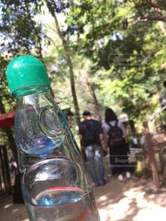 森林の中で飲むラムネの写真・画像素材[1118690]
