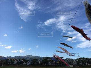 空の凧の写真・画像素材[1160422]