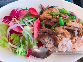 皿のご飯肉と野菜料理の写真・画像素材[1164435]