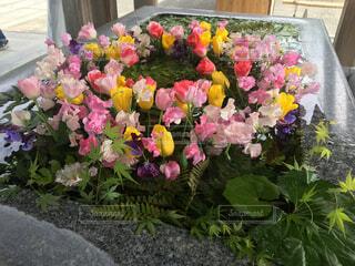 テーブルの上に花の花瓶の写真・画像素材[4305055]