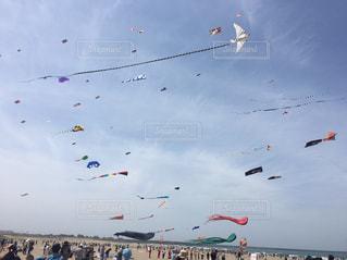 大勢の人が空に凧をあげての写真・画像素材[1121702]