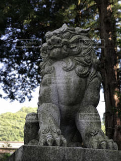 木の前の像の写真・画像素材[1121558]