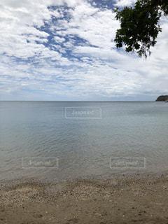 ニューカレドニア ビーチの写真・画像素材[1121631]