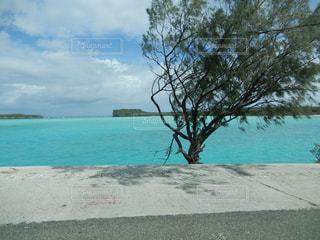 水の体の横にあるビーチの写真・画像素材[1125040]