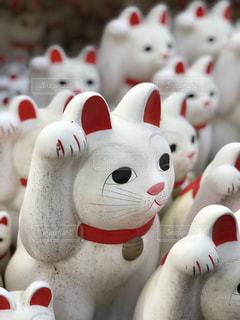 東京 豪徳寺の招き猫の写真・画像素材[1121830]
