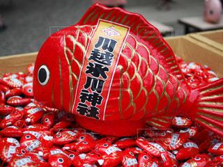 川越氷川神社の一年安鯛みくじの写真・画像素材[1404243]