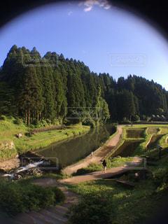 緑豊かな丘の中腹に緑のビューの写真・画像素材[1123951]