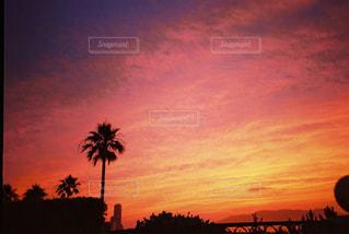 街に沈む夕日の写真・画像素材[1135071]