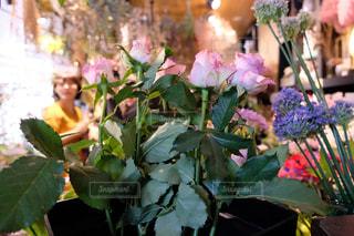 近くの花のアップの写真・画像素材[1853338]