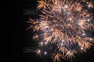 夜空の花火の写真・画像素材[2334108]