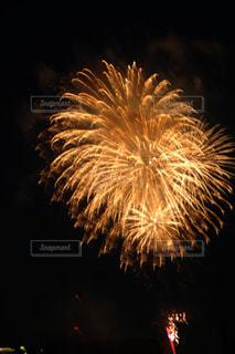 夜空の花火の写真・画像素材[2334142]