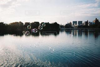 水域の隣の川のボートの写真・画像素材[2381607]