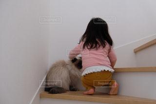 猫を抱いている人の写真・画像素材[2939220]