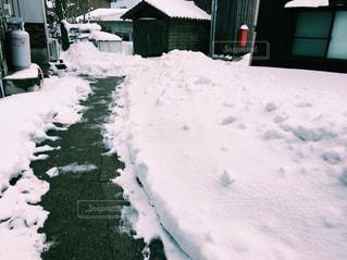 雪の写真・画像素材[1128518]