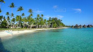 ヤシの木と砂浜、水上コテージの写真・画像素材[1125706]